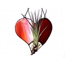 Inima  vitraliu cu Tillandsia